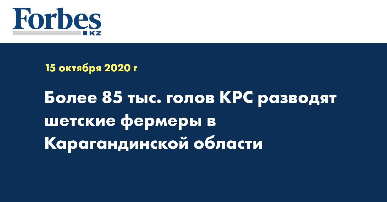 Более 85 тыс. голов КРС разводят шетские фермеры в Карагандинской области
