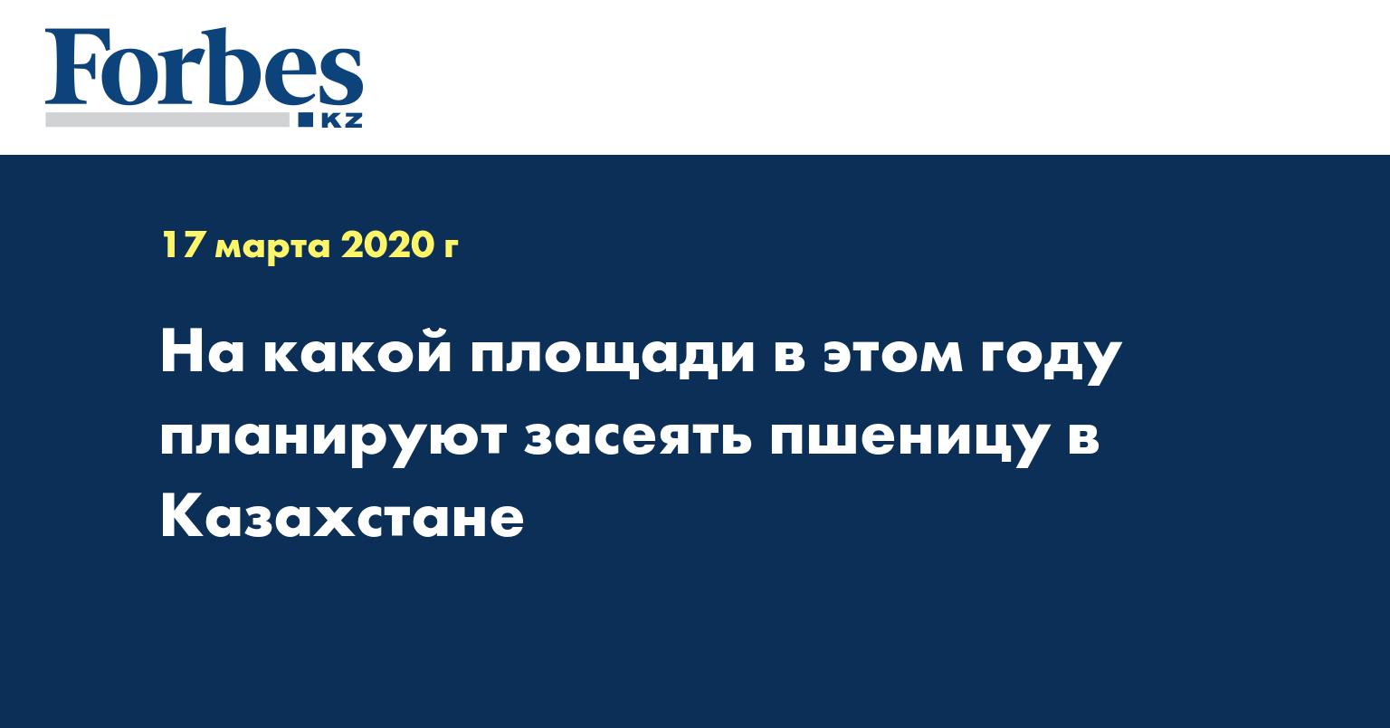 На какой площади в этом году планируют засеять пшеницу в Казахстане