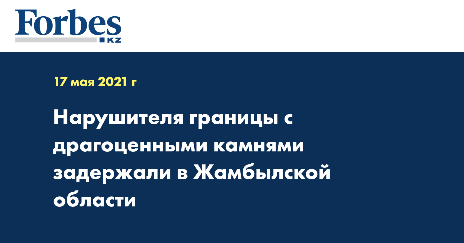 Нарушителя границы с драгоценными камнями задержали в Жамбылской области