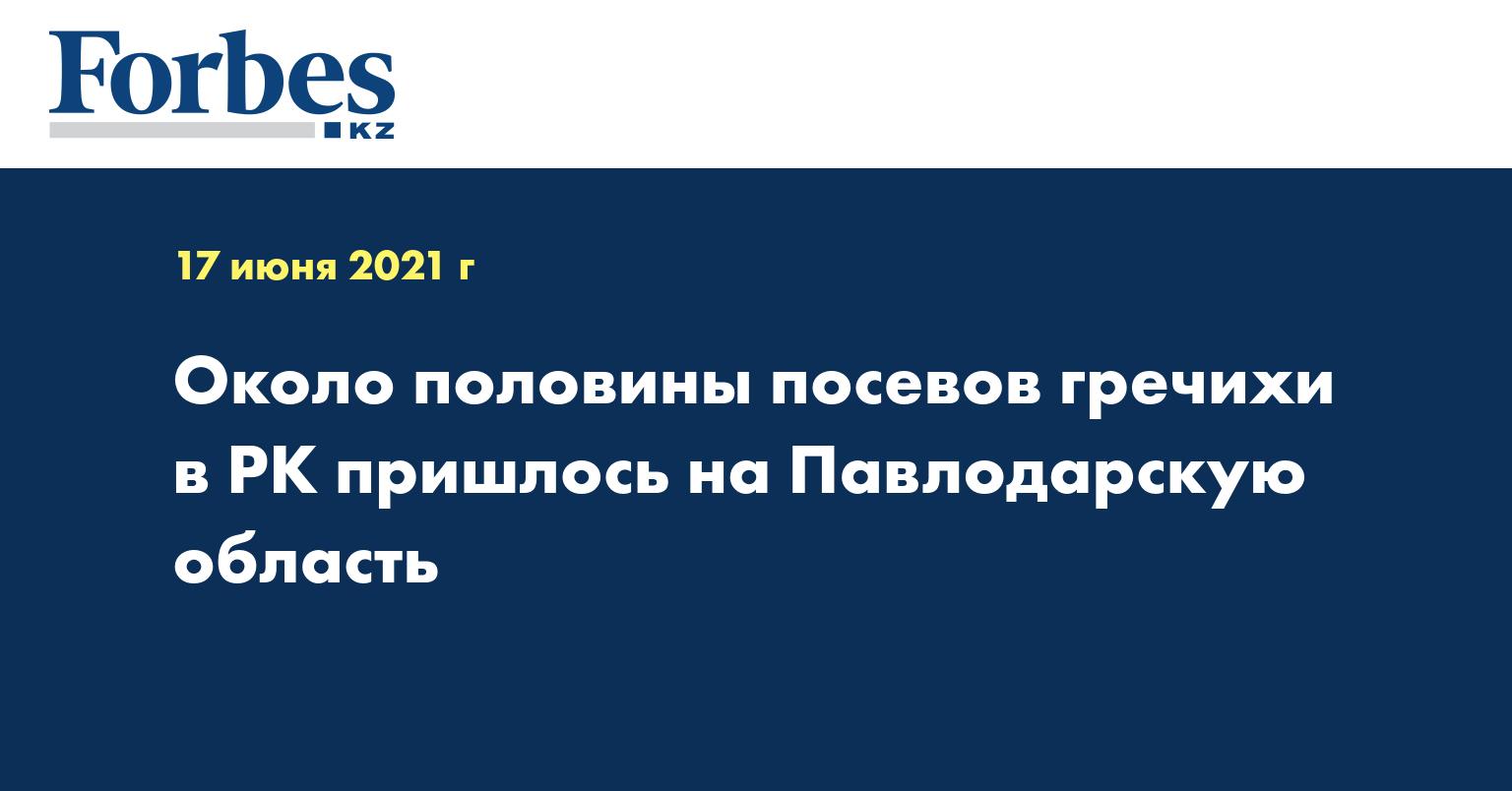 Около половины посевов гречихи в РК пришлось на Павлодарскую область