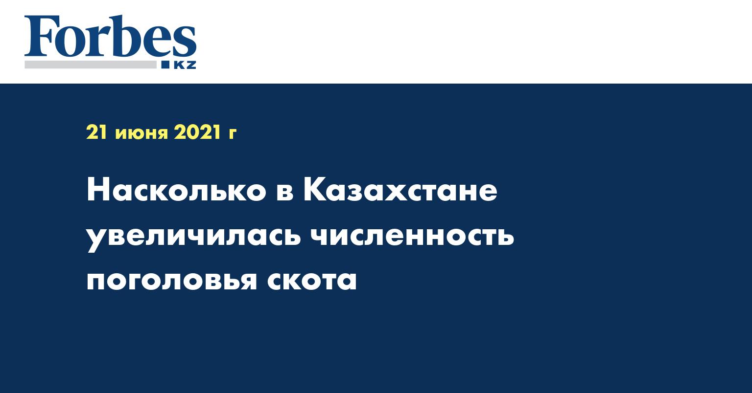 Насколько в Казахстане увеличилась численность поголовья скота
