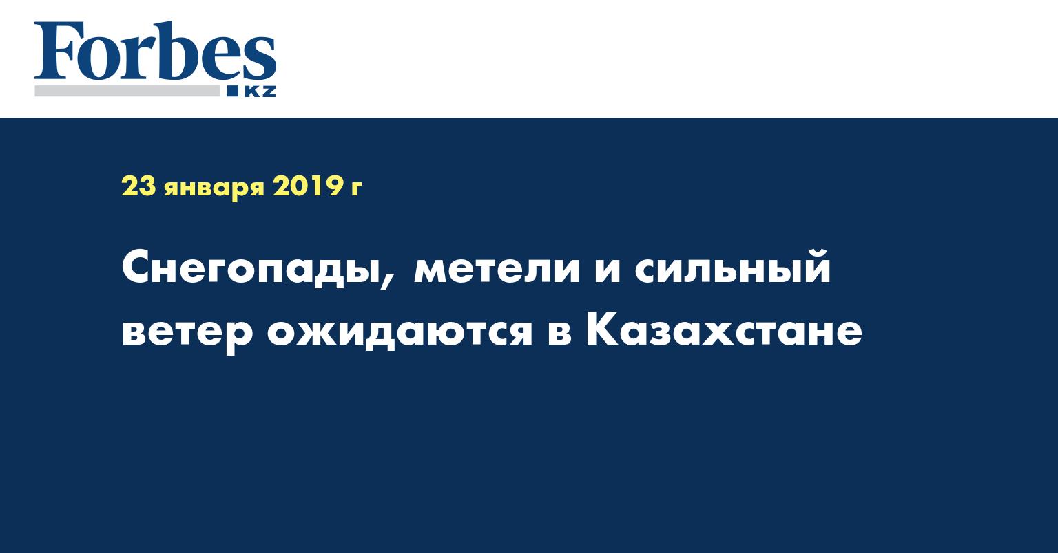 Снегопады, метели и сильный ветер ожидаются в Казахстане