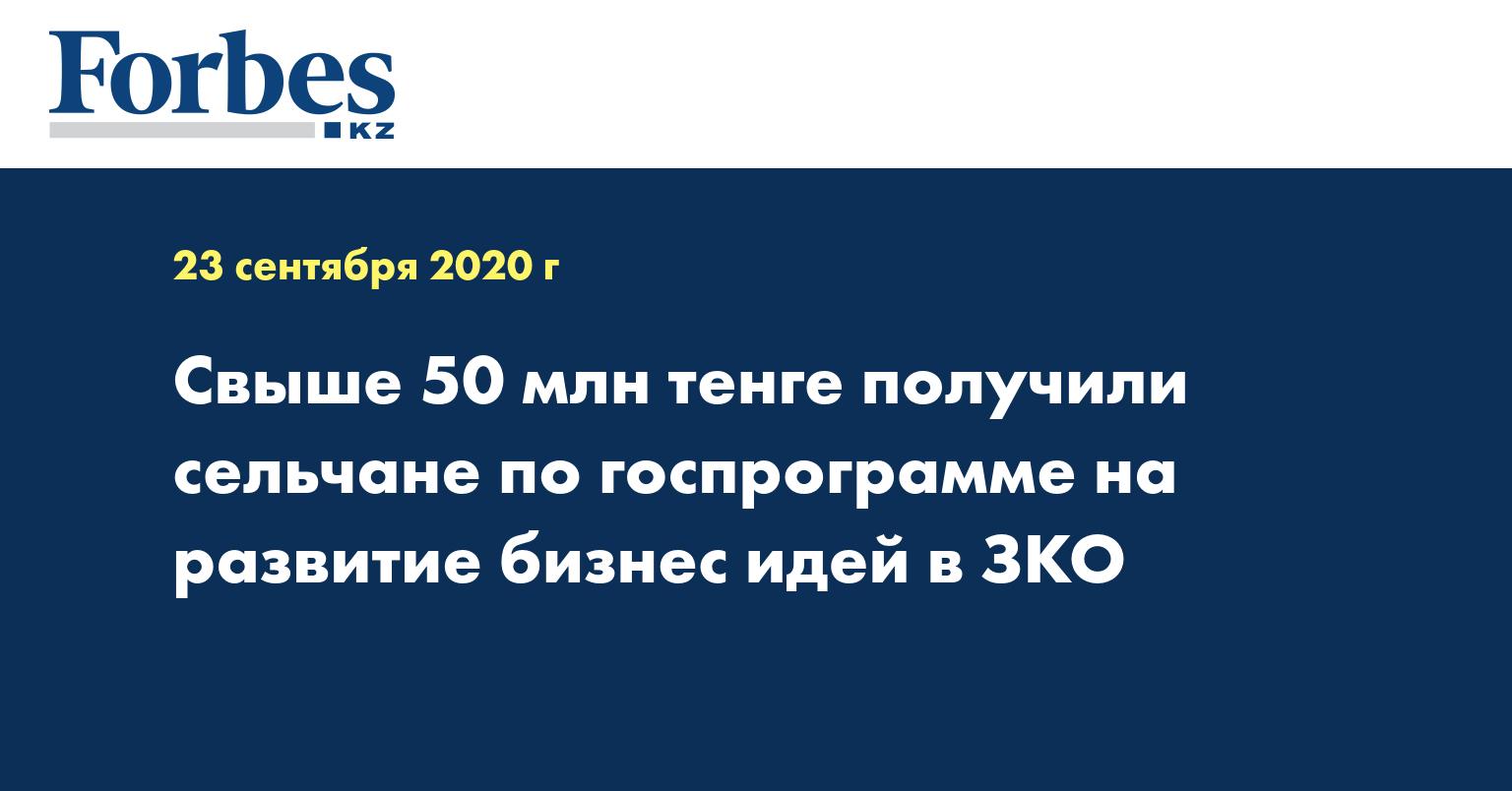 Свыше 50 млн тенге получили сельчане по госпрограмме на развитие бизнес идей в ЗКО
