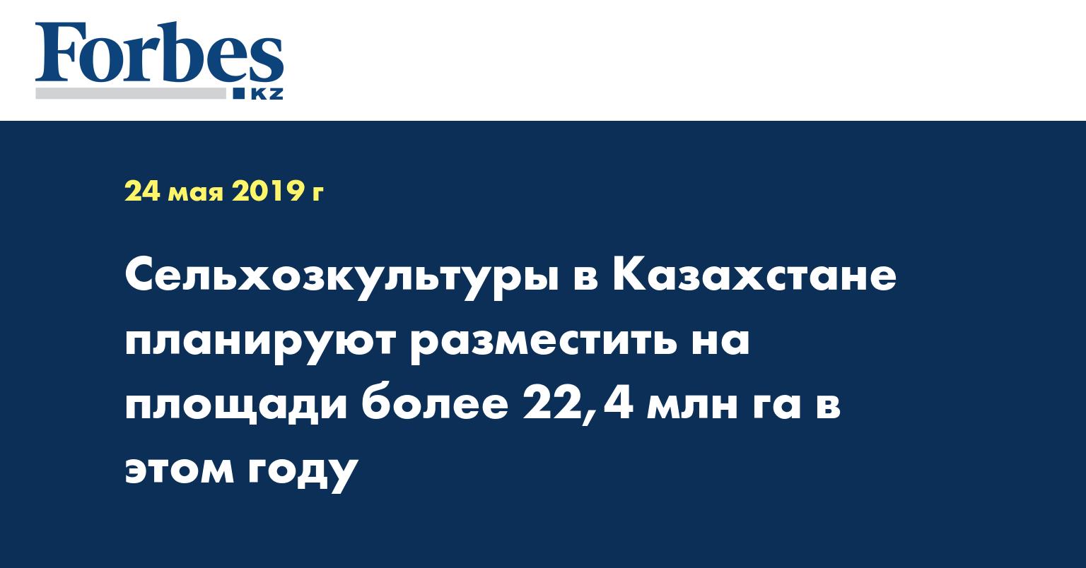 Сельхозкультуры в Казахстане планируют разместить на площади более 22,4 млн га в этом году