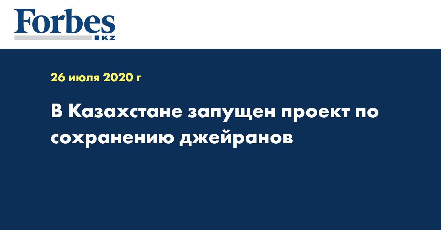 В Казахстане запущен проект по сохранению джейранов