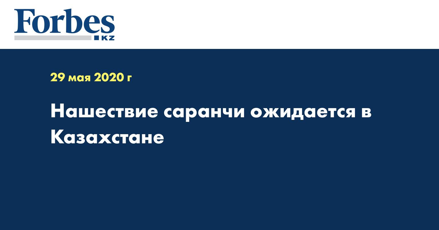 Нашествие саранчи ожидается в Казахстане
